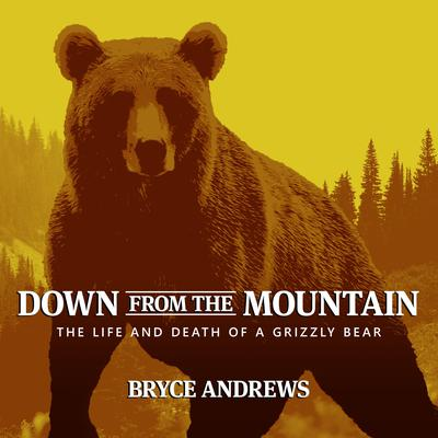 Down from the Mountain: The Life and Death of a Grizzly Bear Audiobook, by Bryce Andrews