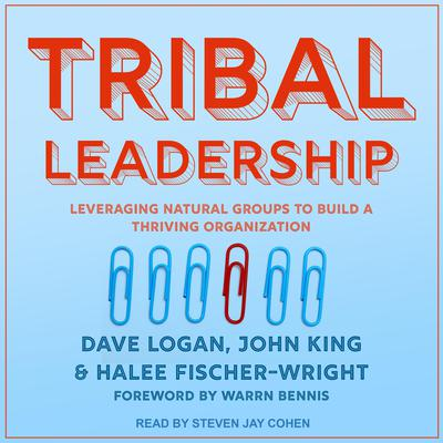 Tribal Leadership: Leveraging Natural Groups to Build a Thriving Organization Audiobook, by Dave Logan