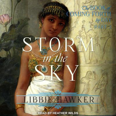 Storm in the Sky Audiobook, by Libbie Hawker