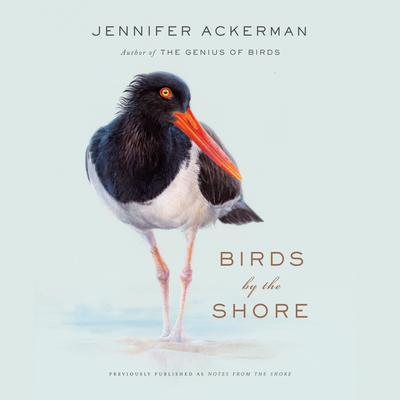 Birds by the Shore: Observing the Natural Life of the Atlantic Coast Audiobook, by Jennifer Ackerman