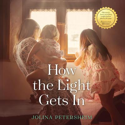 How the Light Gets In Audiobook, by Jolina Petersheim