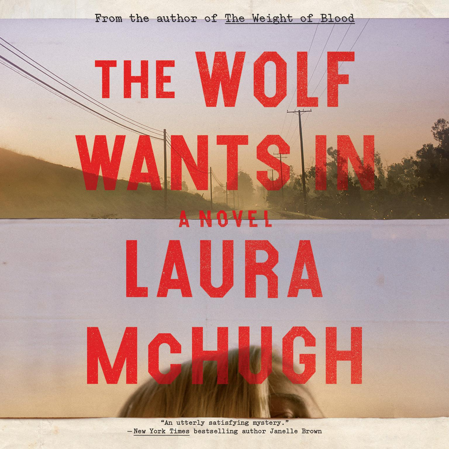 The Wolf Wants In: A Novel Audiobook, by Laura McHugh
