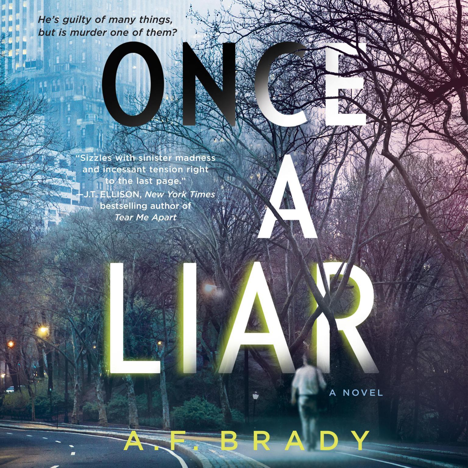 Printable Once a Liar: A Novel Audiobook Cover Art