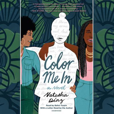 Color Me In Audiobook, by Natasha Diaz