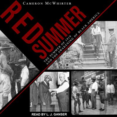 Red Summer: The Summer of 1919 and the Awakening of Black America Audiobook, by Cameron McWhirter