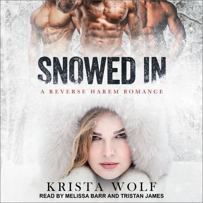 Snowed In: A Reverse Harem Romance Audiobook, by Krista Wolf