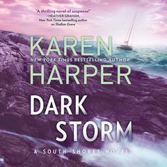 Dark Storm Audiobook, by Karen Harper