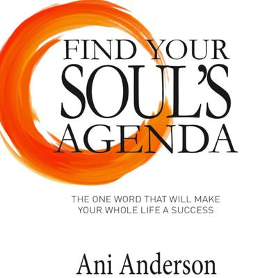 Find Your Souls Agenda: The one word that will make your whole life a success Audiobook, by Ani Anderson