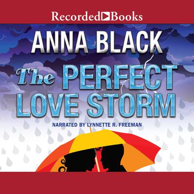 The Perfect Love Storm Audiobook, by Anna Black