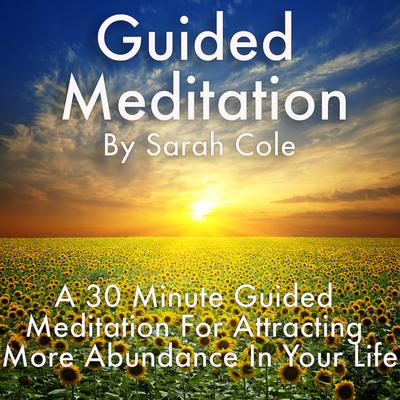 Guided Meditation: A 30 Minute Guided Meditation For Attracting More Abundance In Your Life Audiobook, by Sarah Cole