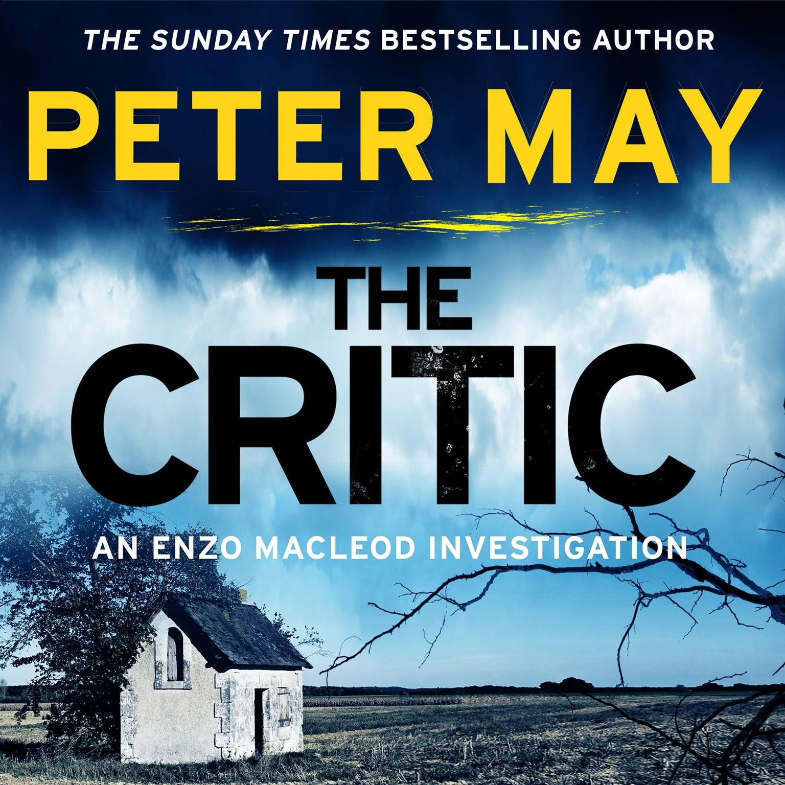 The Critic Audiobook, by Peter May