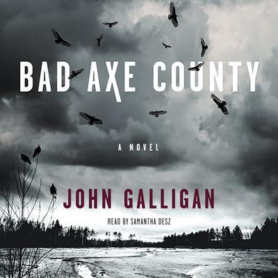 Bad Axe County: A Novel Audiobook, by John Galligan