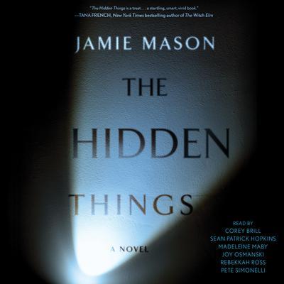 The Hidden Things Audiobook, by Jamie Mason