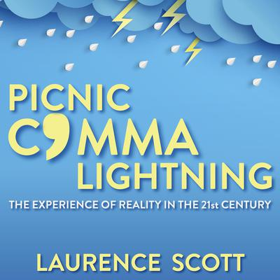 Picnic Comma Lightning: The Experience of Reality in the Twenty-First Century Audiobook, by Laurence Scott