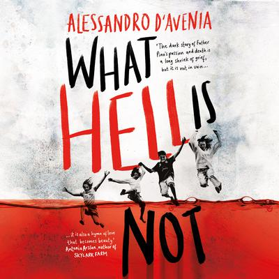 What Hell Is Not Audiobook, by Alessandro D'Avenia