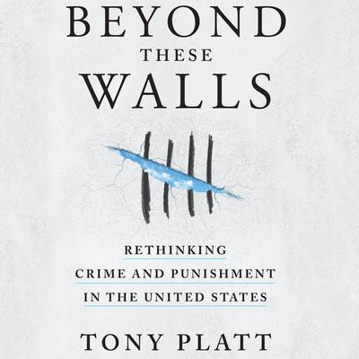 Beyond These Walls: Rethinking Crime and Punishment in the United States Audiobook, by Tony Platt