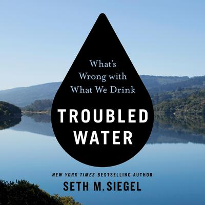 Troubled Water: Whats Wrong with What We Drink Audiobook, by Seth M. Siegel