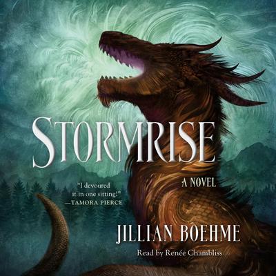 Stormrise Audiobook, by Jillian Boehme