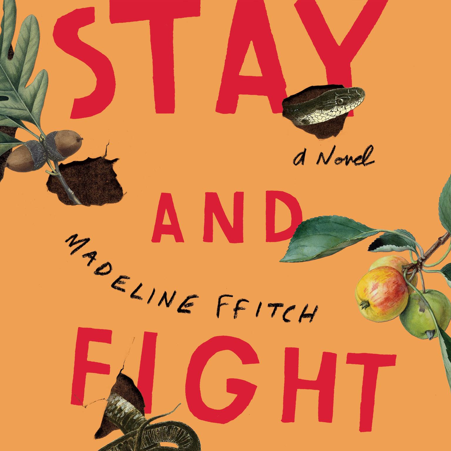 Printable Stay and Fight: A Novel Audiobook Cover Art