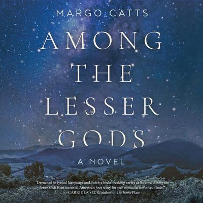 Among the Lesser Gods Audiobook, by Margo Catts