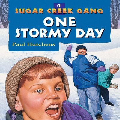 One Stormy Day Audiobook, by Paul Hutchens