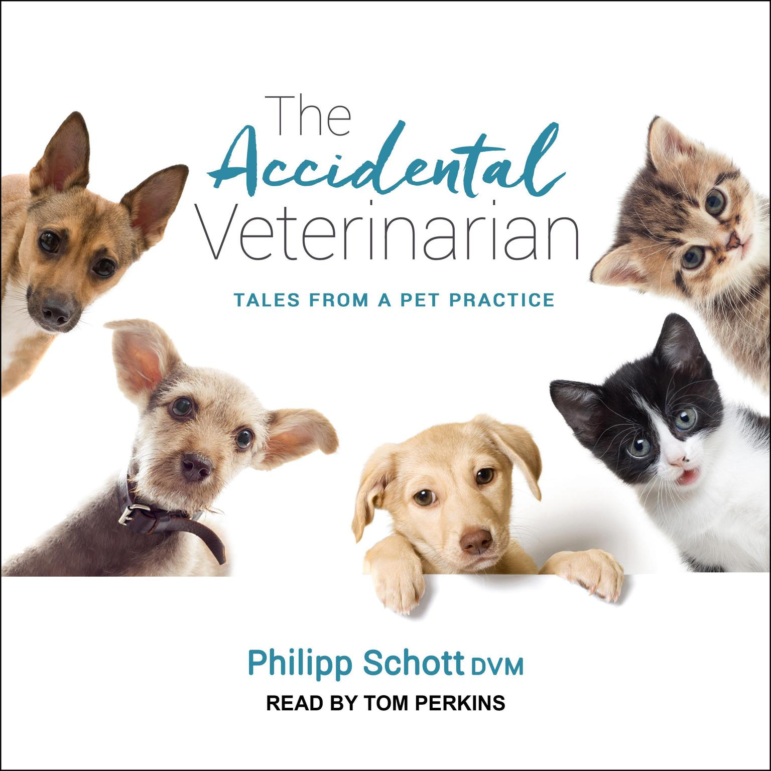 Printable The Accidental Veterinarian: Tales from a Pet Practice Audiobook Cover Art