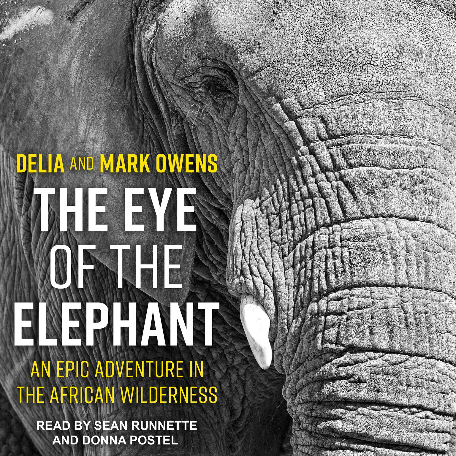 Printable The Eye of the Elephant: An Epic Adventure in the African Wilderness Audiobook Cover Art