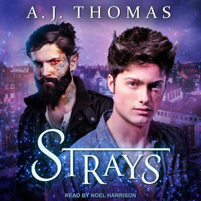 Strays Audiobook, by AJ Thomas