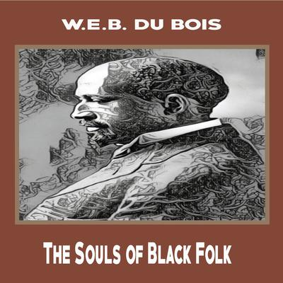 The Souls of Black Folk Audiobook, by Ronald Riley