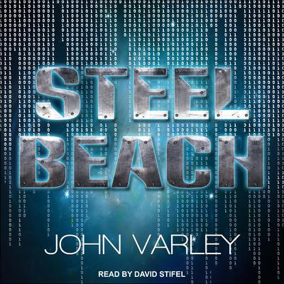 Steel Beach Audiobook, by John Varley