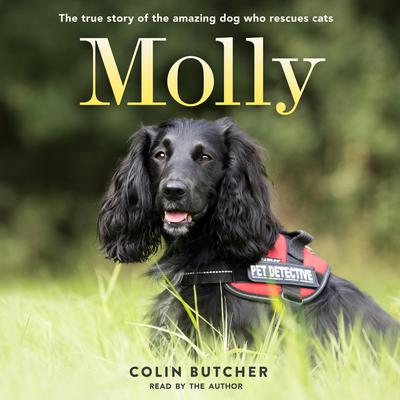 Molly: The True Story of the Amazing Dog Who Rescues Cats Audiobook, by Colin Butcher
