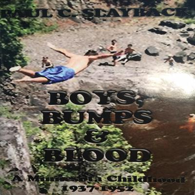 Boys, Bumps and Blood Audiobook, by Paul C. Slayback