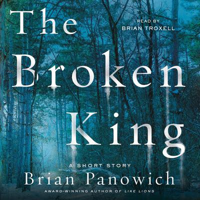 The Broken King: A McFalls County Story Audiobook, by Brian Panowich