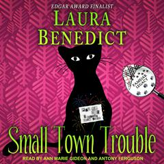 Small Town Trouble Audiobook, by Laura Benedict