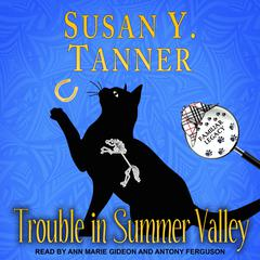 Trouble in Summer Valley Audiobook, by Susan Y. Tanner