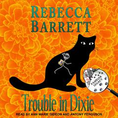 Trouble in Dixie Audiobook, by Rebecca Barrett