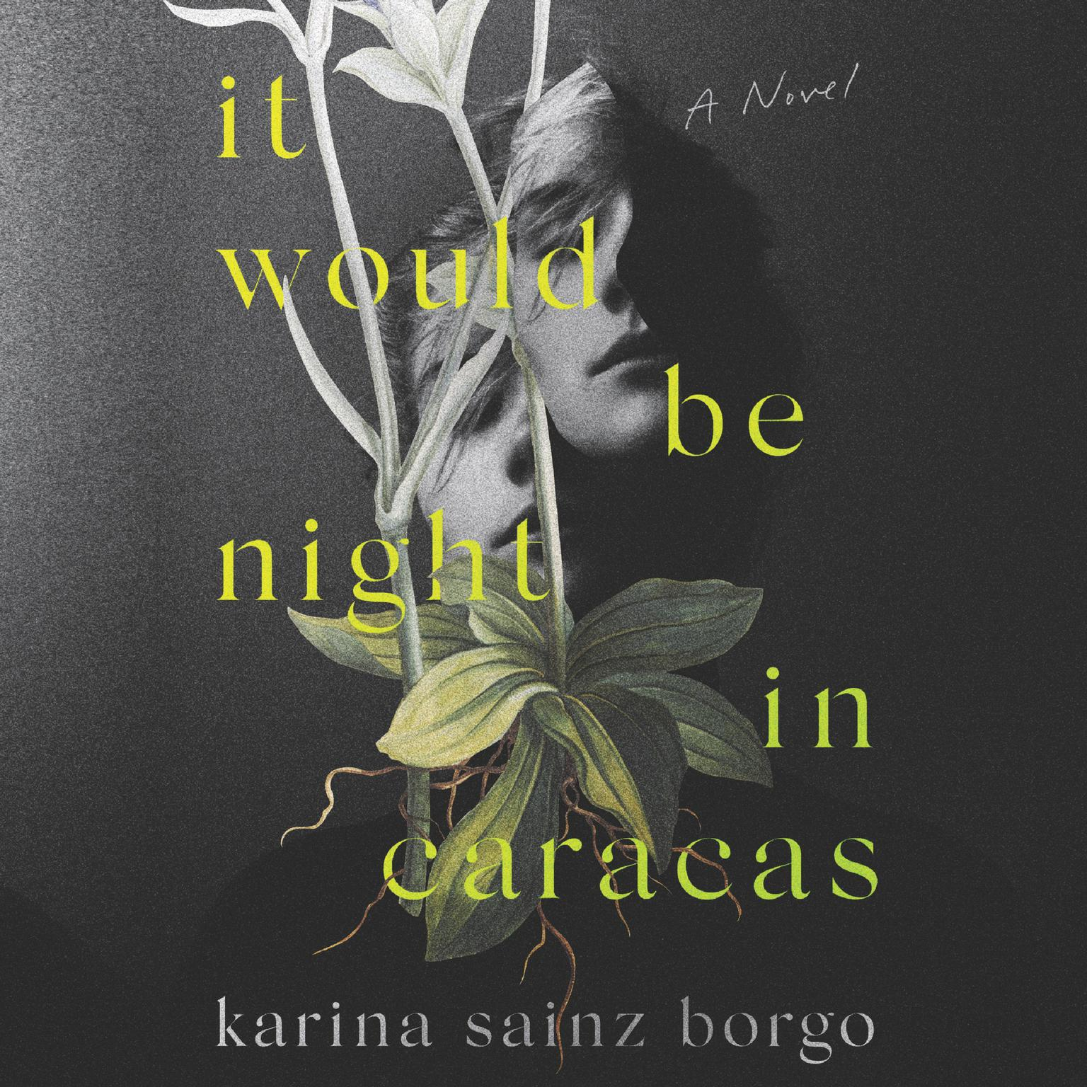 Printable It Would Be Night in Caracas Audiobook Cover Art