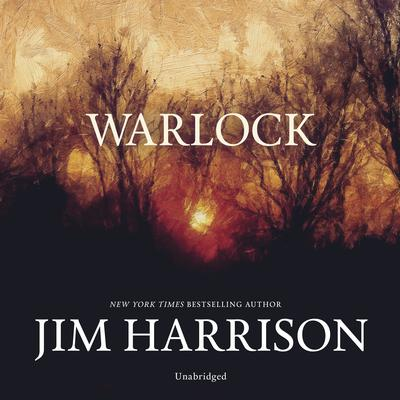 Warlock Audiobook, by Jim Harrison