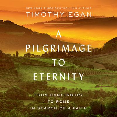 A Pilgrimage to Eternity: From Canterbury to Rome in Search of a Faith Audiobook, by