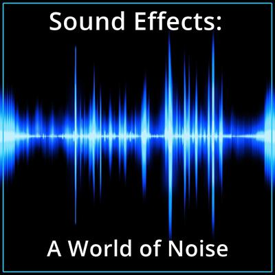 Sound Effects: A World of Noise Audiobook, by Listen & Live Audio
