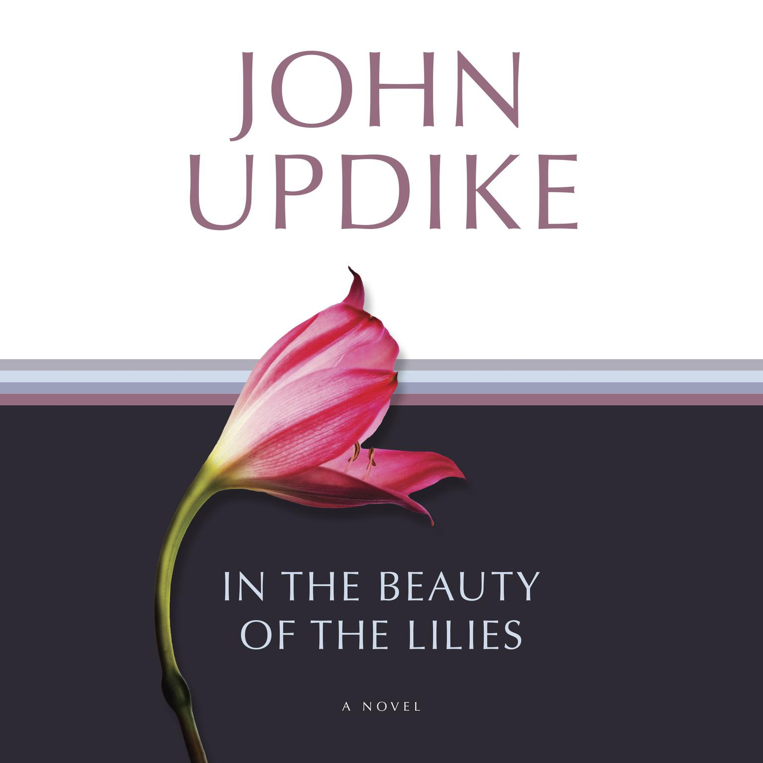 Printable In the Beauty of the Lilies: A Novel Audiobook Cover Art