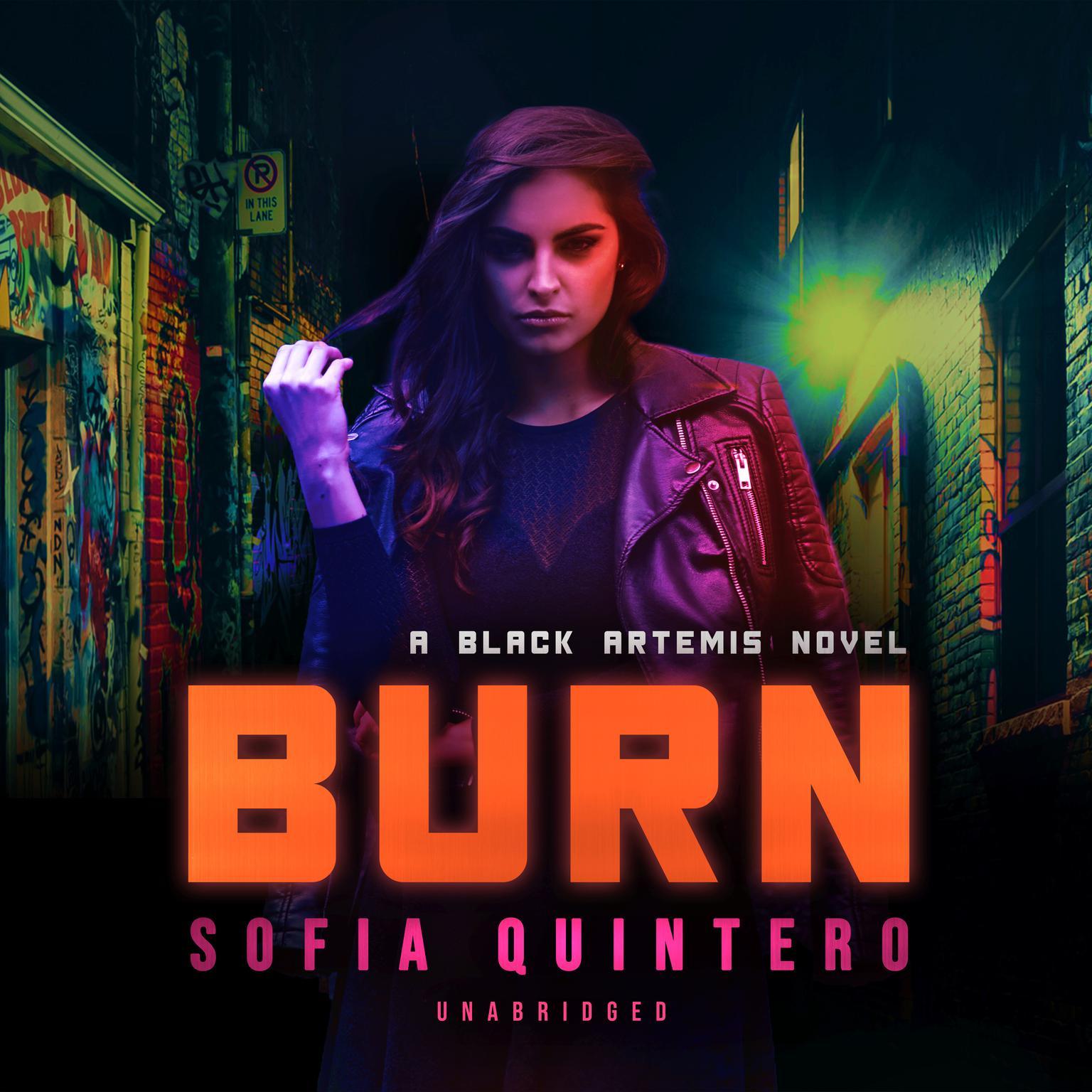 Printable Burn Audiobook Cover Art