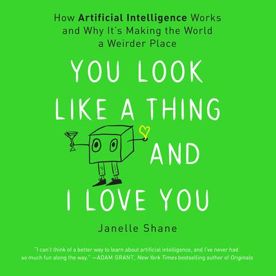 You Look Like a Thing and I Love You: How Artificial Intelligence Works and Why Its Making the World a Weirder Place Audiobook, by Janelle Shane