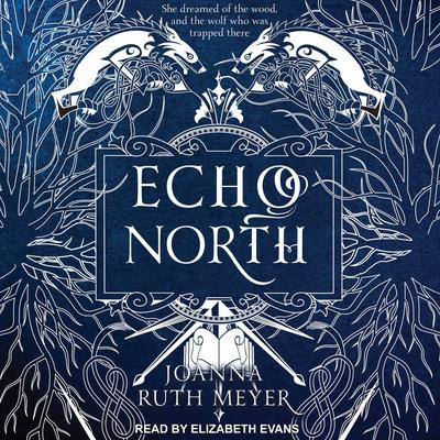 Echo North Audiobook, by Joanna Ruth Meyer