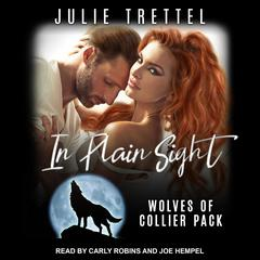 In Plain Sight Audiobook, by Julie Trettel