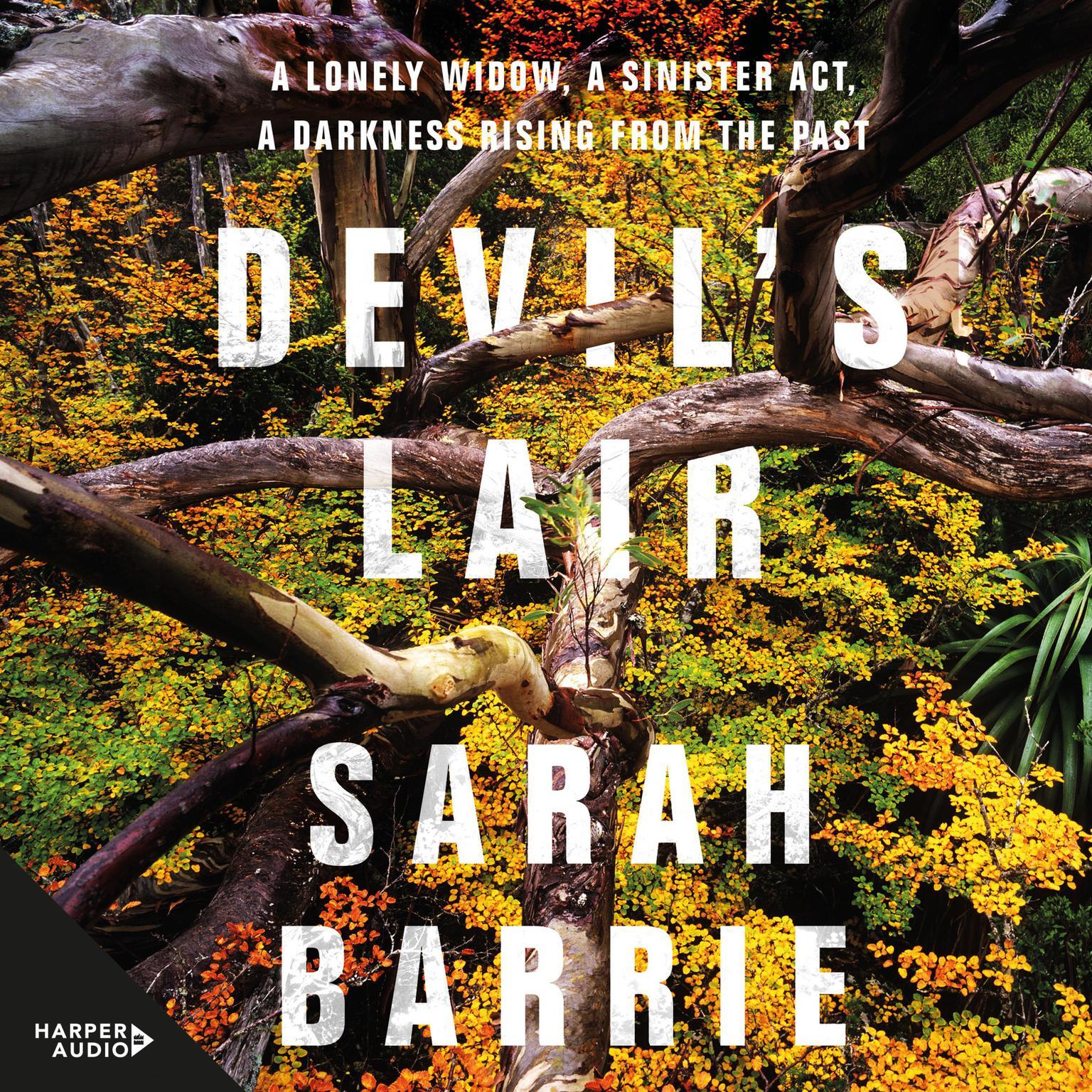 Printable Devil's Lair Audiobook Cover Art