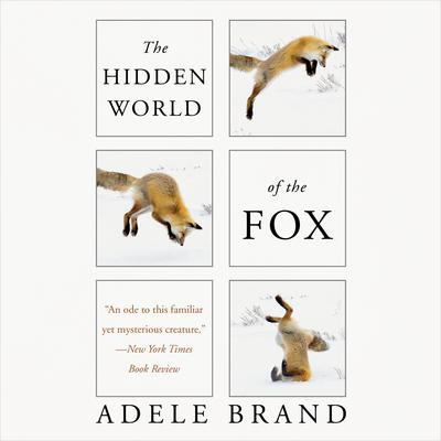 The Hidden World of the Fox Audiobook, by Adele Brand