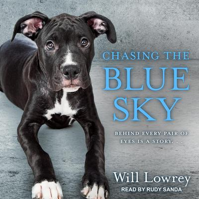 Chasing the Blue Sky Audiobook, by Will Lowrey