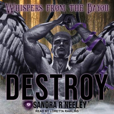 Destroy Audiobook, by Sandra R. Neeley