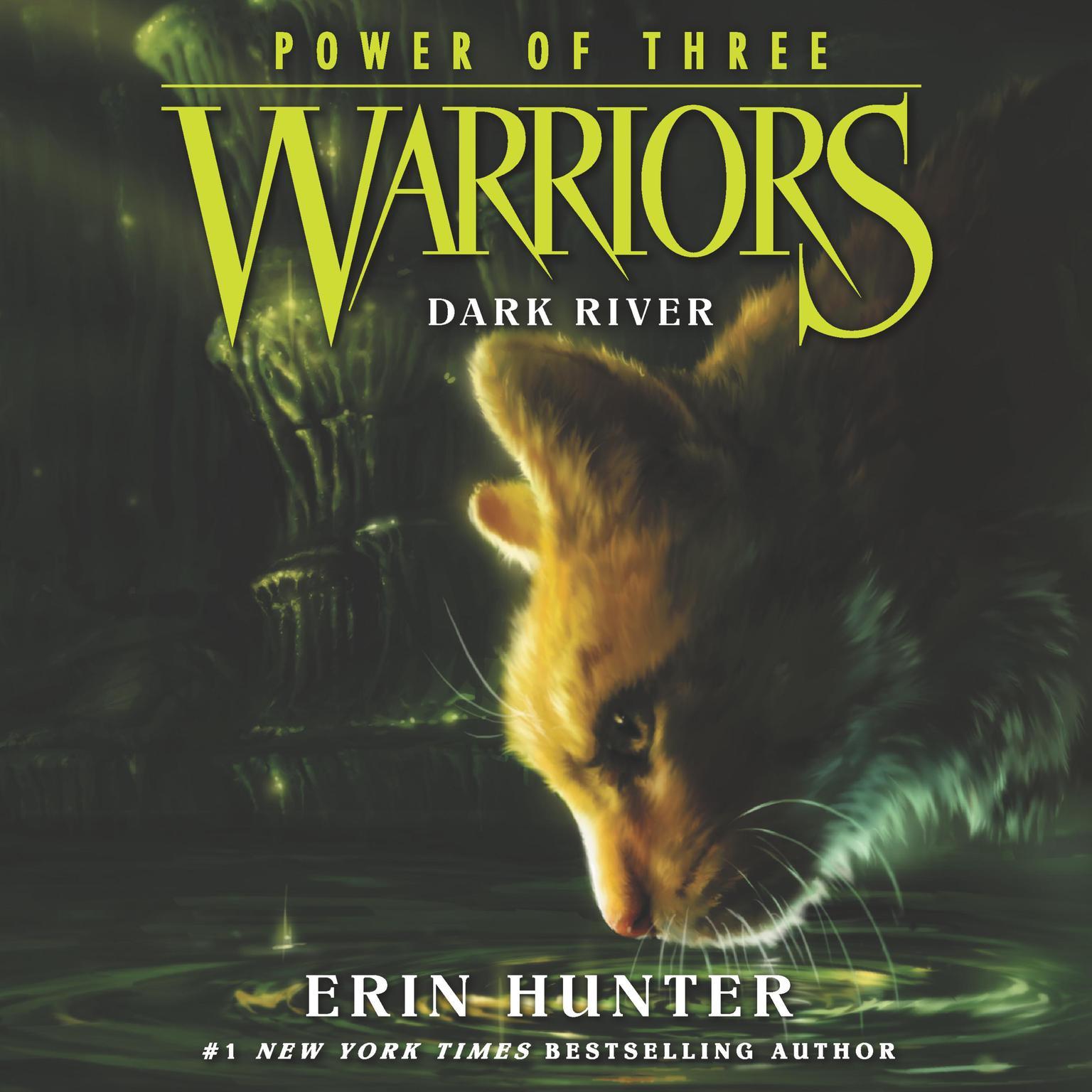 Printable Warriors: Power of Three #2: Dark River Audiobook Cover Art